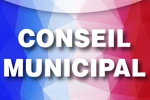 Conseil Municipal Monthelon
